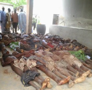 boko haram deaths laid out ii