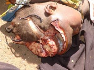 Butchered by Boko Haram