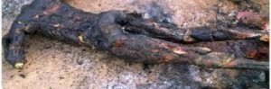 cropped-christians-burned-alive-in-nigeria-resized.jpg