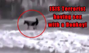 ISIS ZOO