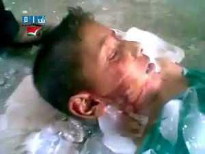 Baghdadis puppy dead